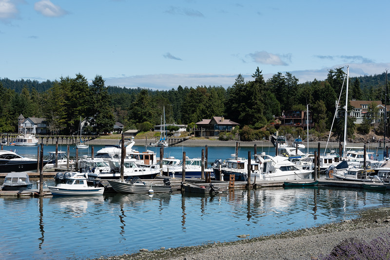 Beautiful Snug Harbor at Mitchell Bay on San Juan Island