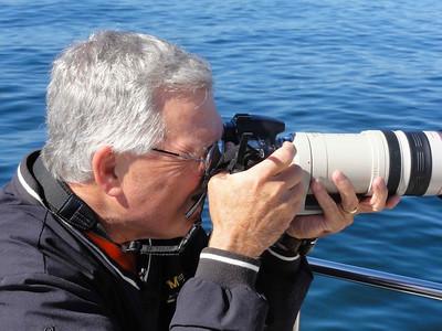 Tom Shooting Whales