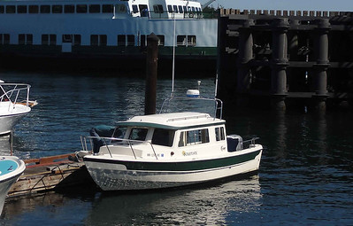 Soulmate, our whale watch boat.