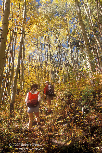 Woman and Man Hiking in La Plata Mountains, Autumn, San Juan National Forest near Durango, Colorado