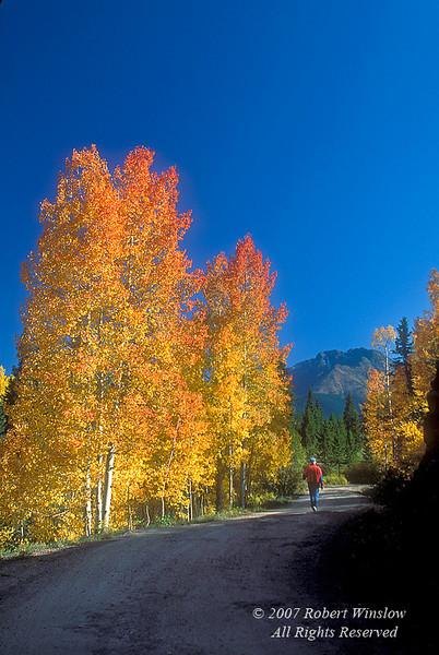 Model Released, Autumn, Hiker, Lime Creek Road, San Juan Mountains, San Juan National Forest, Colorado
