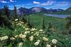 Taylor Lake, La Plata Mountains, Southwestern Colorado