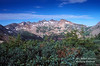 La Plata Mountains, Southwestern Colorado