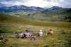 Mountain Bike Riders Resting, Autumn, San Juan Mountains, San Juan National Forest outside of Durango, Colorado