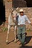 Vaquero, rancho near San Miguel de Allende