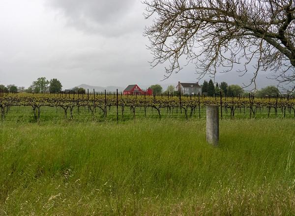 Vines barn 02871