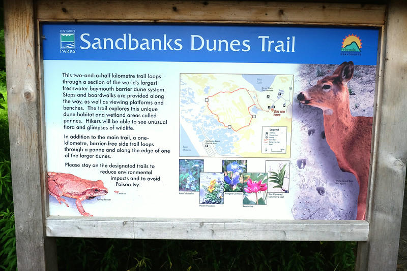 The story of the dunes - the largest such collection in the world, it says. We did all the trails in about an hour. A bit tough when on sand, but easier on the many boardwalks set up to prevent erosion.