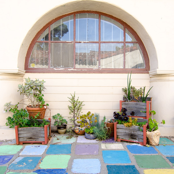 "<span id=""title"">Succulents</span> <em>Balboa Park</em>"