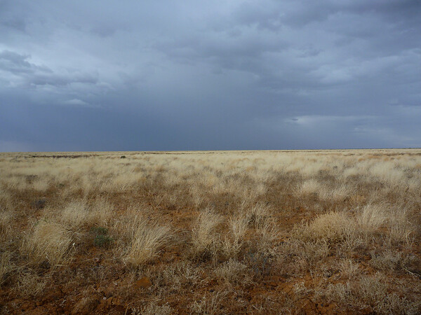Darkening Skys between Oodnadatta and Finke