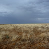 Darkening Skys between Oodnadatta and Finke