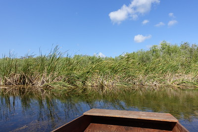 front of pole boat - Everglades