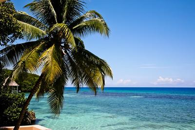Sans Souci - Jamaica