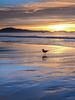 Sunrise on East Beach Santa Barbara, CA January 2005