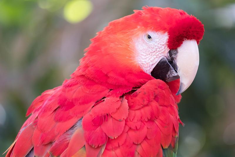 Santa Barbara Zoo 2016