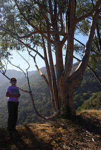 Steffani by a Eucalyptus tree on the south end of the Island