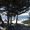 Carmel beach: sun lovers' paradise.