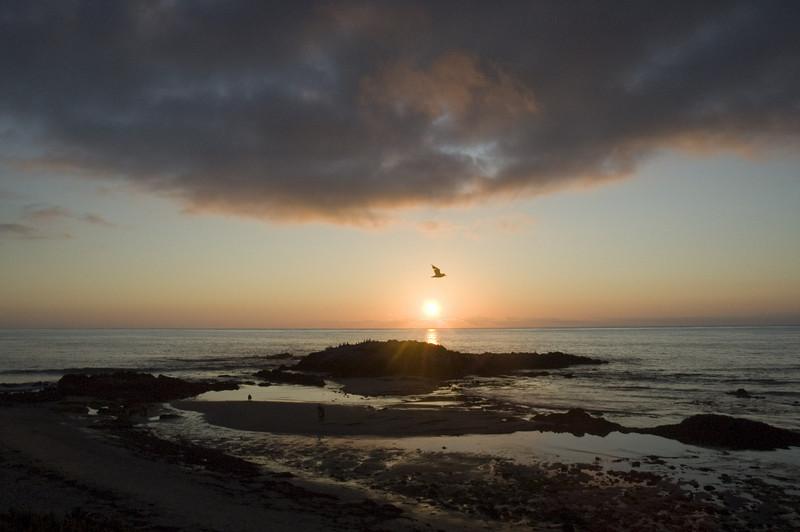 Zen sunset near Half Moon Bay