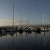 Monterey's marina in the morning sunlight.