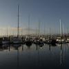 Monterey's marina in the morning sunlight.