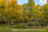 Autumn in Santa Fe