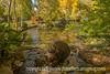 Santa Fe Sculpture Garden