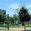 Springfield, the capital of Illinois