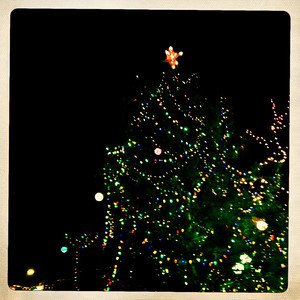 Santa Fe Plaza Christmas Tree
