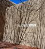 The Georgia O'Keeffe Museum, Santa Fe