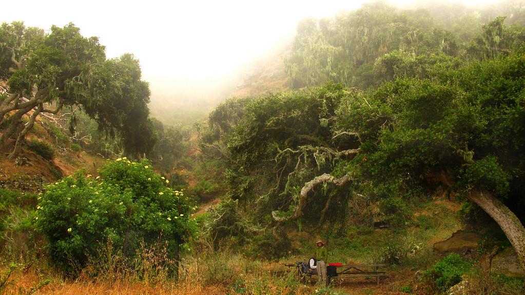the land that time forgot. (Lobo Canyon)