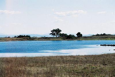 11/14/04 Main Vernal Pool, Santa Rosa Plateau Ecological Reserve, SW Riverside County, CA