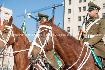 Santiago, Chile, street scene, mounted police or carabineros on duty in the square outside the Presidential Palace, la Moneda. Tourists seem to be suffered as they clamour to have themselves photographed with them.