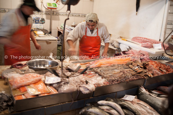 The Mercado Central de Santiago is the central meat & fish market of Santiago de Chile. It was opened in 1872