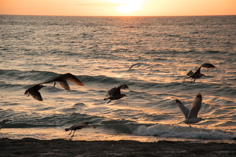 Sunset on Florida Coast