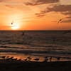 Sunset on Florida Coast