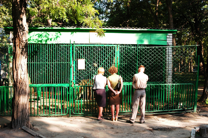 FEMA would have an annurism! The middle cage, approximately 5'X7' box, contains a BEAR.