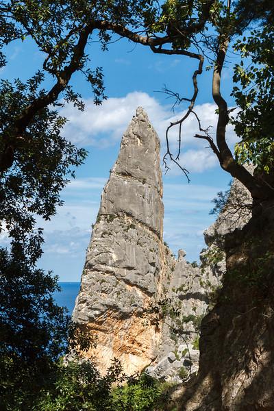 Die Punta Goloritze taucht zwischen den Bäumen auf