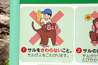 No spanking the monkey!
