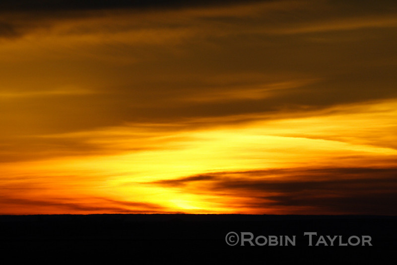 Dawn on the prairie south of Eston, Sask