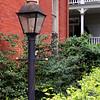 Savannah gas light