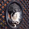 Decorative door grate