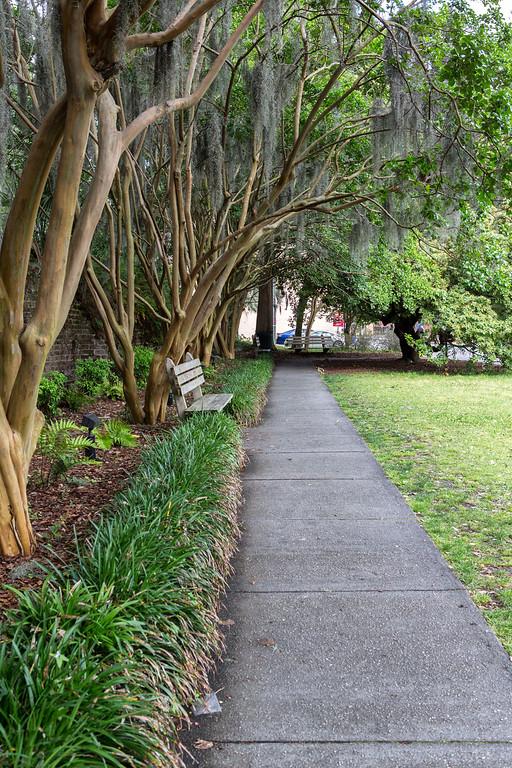Savannah Walkway