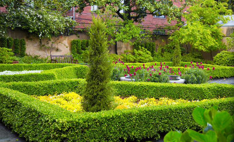 Manicured Garden
