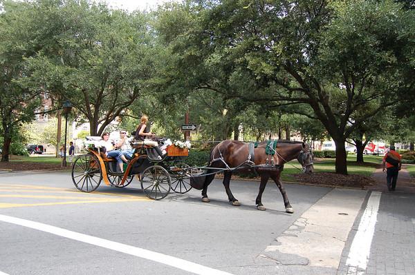 Savannah Trip 2007