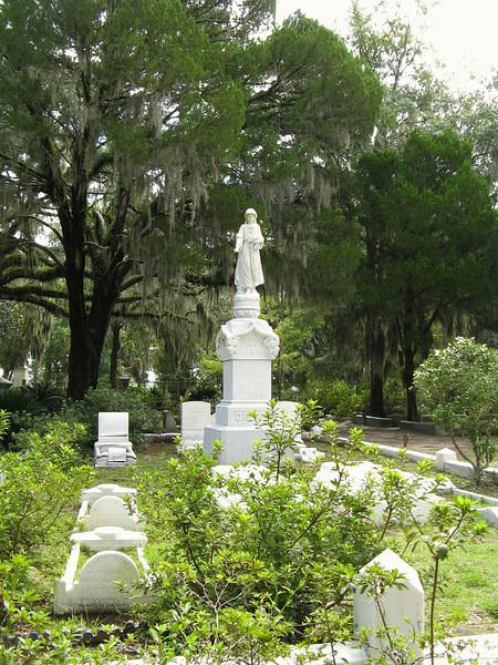 Savannah 055