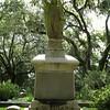 Savannah 061