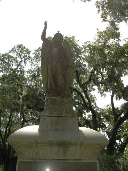 Savannah 059