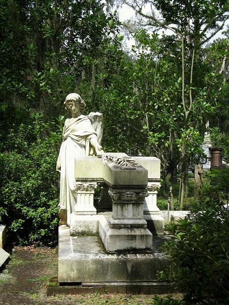 Savannah 051