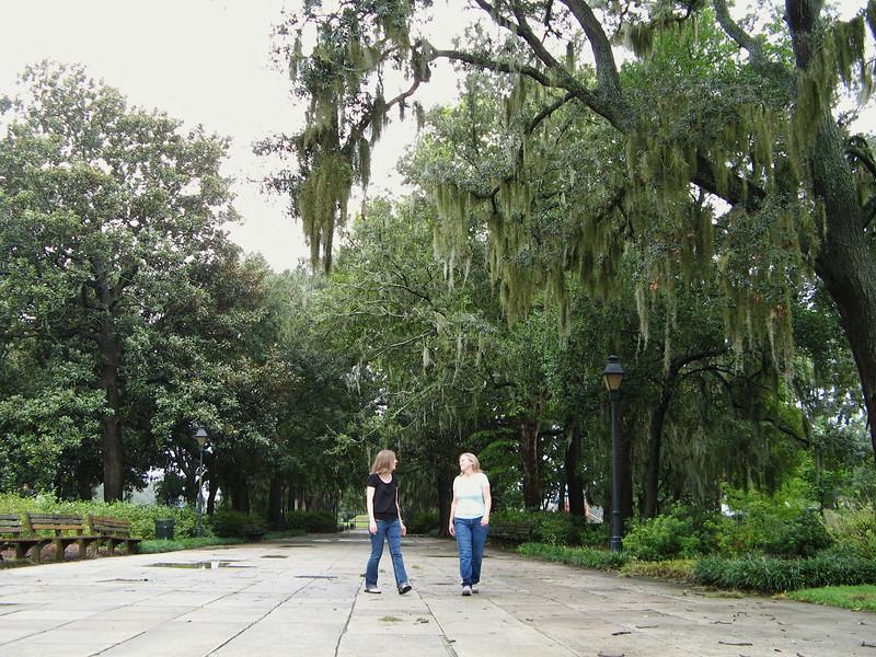 Savannah 036