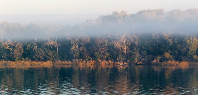 Early morning fog on the Savannah River
