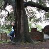 Savannah 021